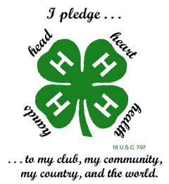 4-H - head, heart, hands, health